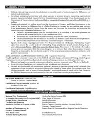 federal resumes samples director resume design director resume