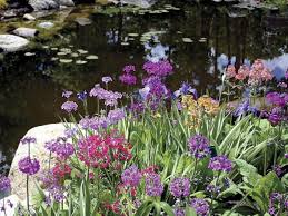 Botanical Garden Maine New S Glorious Gardens Harvard Magazine