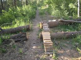 log and wood mountainbike obstacle with chicken run at the side