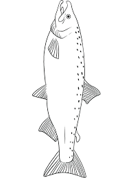 salmon fish coloring page salmon coloring pages related post salmon fish coloring pages