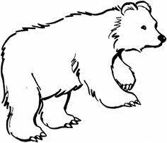 roaring angry bear cartoon angry bear alaska trip
