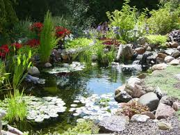 beautiful diy backyard pond how to build diy backyard pond