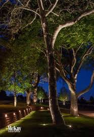 20 landscape lighting design ideas outdoor tree lighting