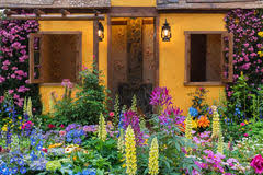 residential flower garden stock image image of colours 5331521