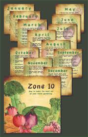a 12 month veggie gardeners to plant list for zone 10 south