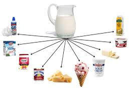 what is chagne made of milk the scoop on chemical and physical changes