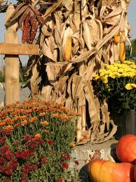 trend decoration fall decorating ideas for a wedding reception