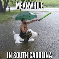 South Carolina Memes - south carolina ii journalistate