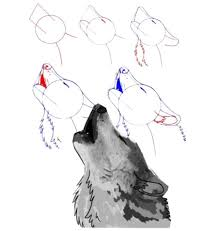 best 25 how to draw wolf ideas on pinterest how to draw dogs
