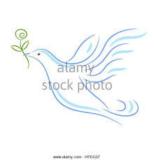 dove stock vector images alamy