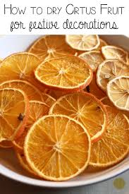 best 25 dried orange slices ideas on