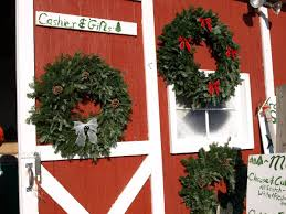ben u0027s christmas tree farm 630 279 0216 front page