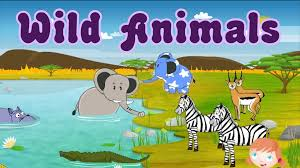 learn about wild animals animal sounds fun and educational