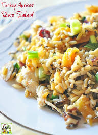 easy thanksgiving leftover recipes looking for healthy turkey leftover recipes try turkey apricot
