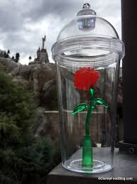beauty and the beast light up rose giveaway enter to win the elusive beauty and the beast light up