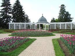 Botanical Gardens Niagara Falls Thousands Of Pink Purple Tulips Picture Of Niagara Parks
