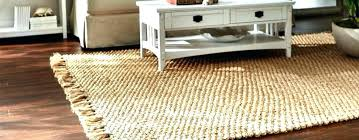 Bamboo Outdoor Rugs New Better Homes Outdoor Rugs Startupinpa
