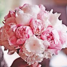blooms flowers 244 best images about wedding flowers on white peonies