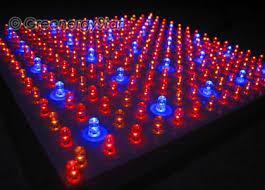 red and blue led grow lights 16w 229pcs blue red orange led grow light panel 100v 240v 50 60hz