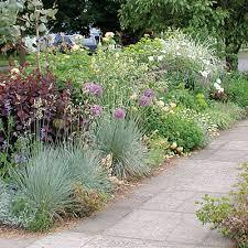 Sidewalk Garden Ideas 20 Garden Border Designs Allium Sidewalk And Grasses