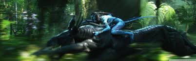 photo collection avatar movie wide wallpaper