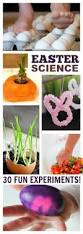 291 best science experiments for kids images on pinterest