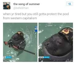 Russian Song Meme - in soviet russia seal removes you imgur