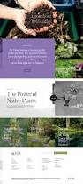 native plants natural areas notebook 11 best alabama native plants trees images on pinterest grass