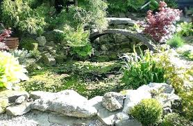 Small Garden Rockery Ideas Small Rock Garden Rock Garden Ideas Small Rock Garden Ideas