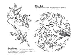 new york state symbols coloring page within flower coloring page