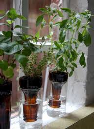 Window Sill Herb Garden by 39 Diy And How To Indoor Herb Garden Windowsill Ideas U2013 Design
