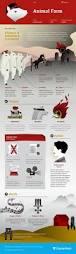 best 25 animal farm study guide ideas on pinterest my animal