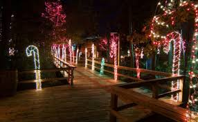Saluda Shoals Lights Riverbanks Zoo And Garden