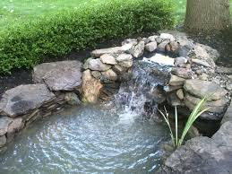 Is A Backyard Pond An Ecosystem Logan Author At Premier Ponds Page 3 Of 6
