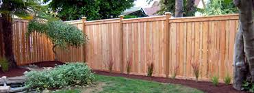 Types Of Backyard Fencing Stylish Ideas Types Of Privacy Fences Easy 101 Fence Designs