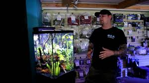 different types of aquariums youtube