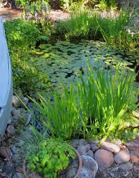 san diego landscape design portfolio archives christiane a pond is an enjoyable part of the home landscape design