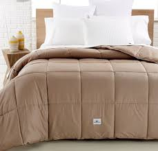 lacoste home sateen color down alternative full queen comforter