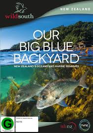 Our Big Backyard by Our Big Blue Backyard Dvd Buy Now At Mighty Ape Nz