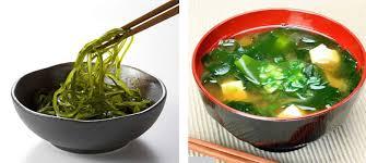 cuisiner les algues les algues utilisées dans la cuisine japonaise
