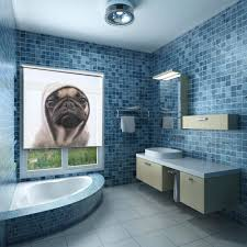 Bathroom Blinds Ideas Animal Fun Image By Getty Images Printed Onto Your Custom Made