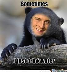 Meme Bear Grylls - bear grylls nonsense dump album on imgur