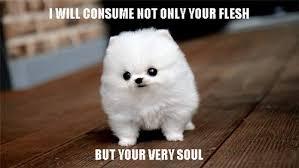 Mine Meme - your soul will be mine meme by darryle2 memedroid