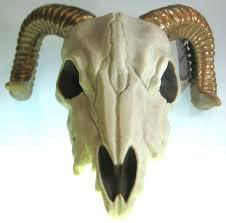 Plastic Halloween Skeleton by Plastic Ram Skeleton Head Cappel U0027s