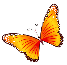 wall butterfly group of stickers for kids room nursery decals by