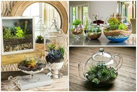 how to make a magical miniature terrarium garden