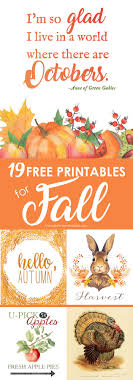 2486 best thanksgiving fall images on fall crafts