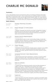 Digital Media Resume Examples by Strategic Marketing Consultant Resume Samples Visualcv Resume