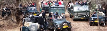 safari jeep ranthambore jeep safari booking ranthambore tour packages