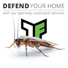 house pest control truforce pest control powerful home u0026 commercial defense